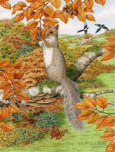 Caroline's Treasures ASA2074CHF Grey Squirrel Canvas Hous...
