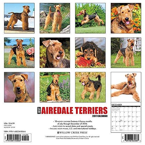 Amazon Dog Calendars By Breed