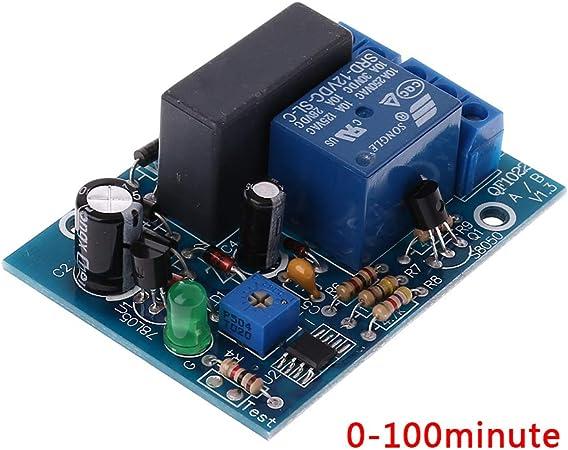 YoungerY Timer modulo rel/è temporizzatore 220V da 1 a 100 Minuti