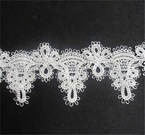 e Floral Flower Embroidery Lace 2 Meters Sewing Venice Trim Ribbon (Venice Embroidery)