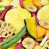 【自然の館】 10種類の野菜チップス 2個セット(110g×2)