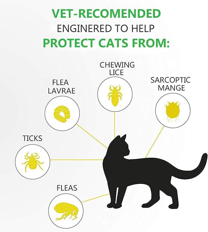 Collar Antiparasitario para Gatos, Protección de 8 Meses ...