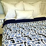 ReachTherapy Solutions Weighted Blankets - Includes Duvet Cover & Insert - Made in USA (10 lbs & H 65'' x W 45'' - Dinobots)