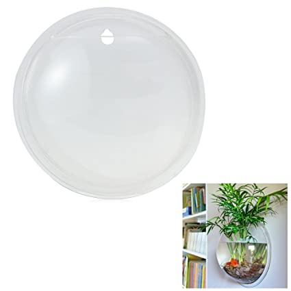 Amazon Wall Plant Planter Acrylic Vases For Flowers Grass
