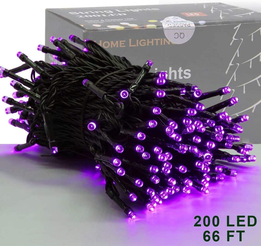 Home Lighting 66ft Christmas Decorative Mini Lights, 200 LED Green Wire Fairy Starry String Lights Plug in, 8 Lighting Modes, for Indoor Outdoor Xmas Tree Wedding Party Decoration (Purple)