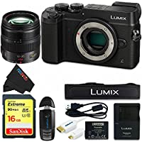 Panasonic DMC-GX8 (BLK2) Lumix Digital Camera Bundle (Black)