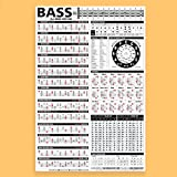 "Essential Bass Theory Chart Version 2 (UPDATED & REVISED) • Bass Reference Poster 24""x36"""