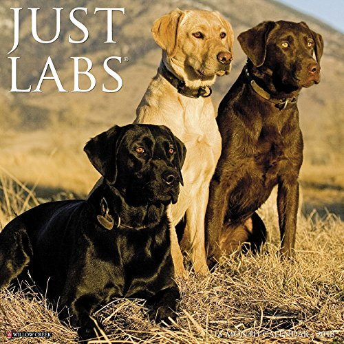 Blackwell Outdoor Wall (Just Labs 2018 Calendar)