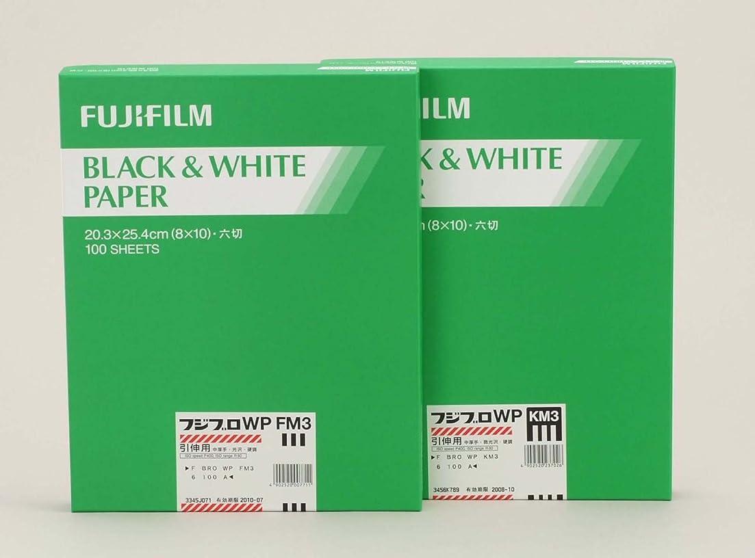 符号灰フェミニンFUJIFILM 黒白多階調印画紙 フジブロ バリグレード WP 半光沢面 全紙 20枚入り F BRO VG WP AM Z 20 A