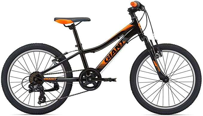 GIANT XTC Junior JR 20 - Bicicleta Infantil de montaña con Rueda ...