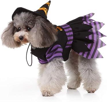 POPETPOP Disfraz de Bruja de Perro: Disfraces de Halloween para ...