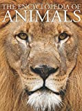 img - for The Encyclopedia of Animals book / textbook / text book