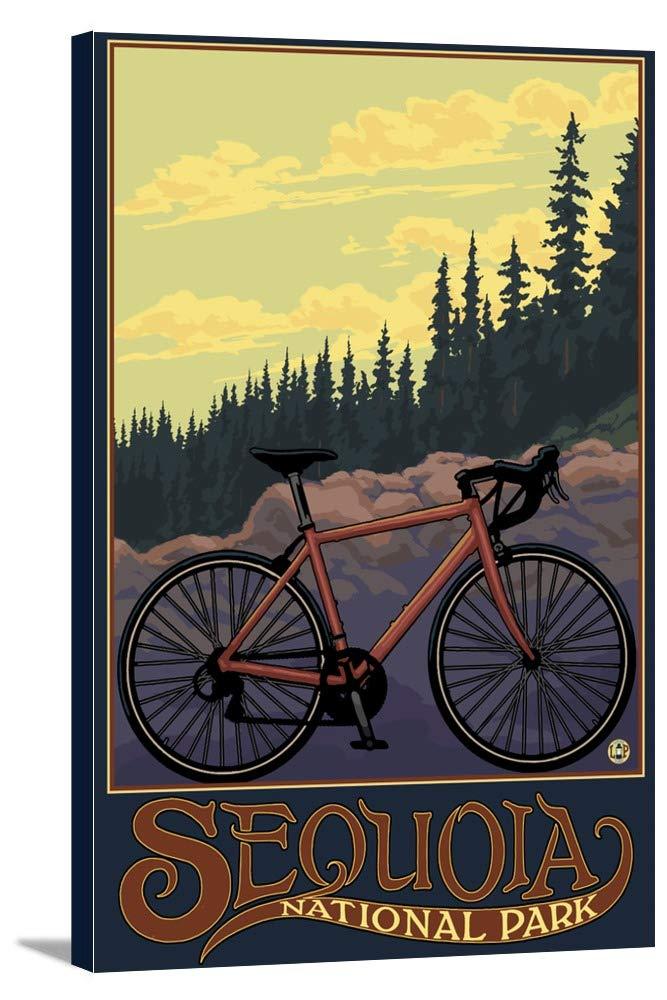セコイア国立公園 – Bike and Trail 12 x 18 Gallery Canvas LANT-3P-SC-30894-12x18 B018P4JA1C  12 x 18 Gallery Canvas