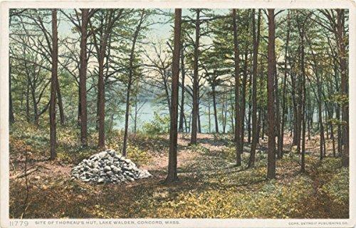 Vintage Postcard Print | Site of Thoreau's Hut, Concord, Mass., 1907 | Historical Antique Fine Art - Hut Site
