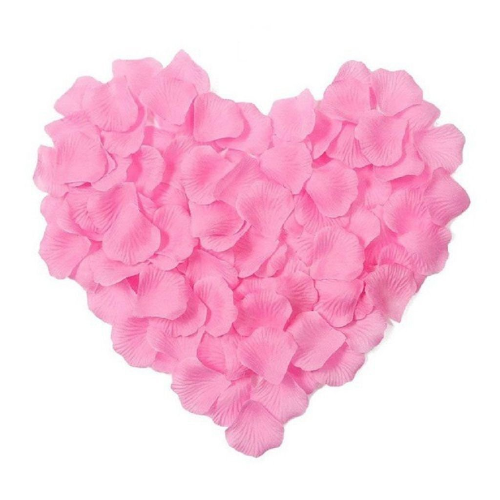 Beauty-Emily Multi Color Rose Petals Decorating Wedding Party//Valentines Day Carnival for Romantic Love 3000 Pcs PT08001-RD