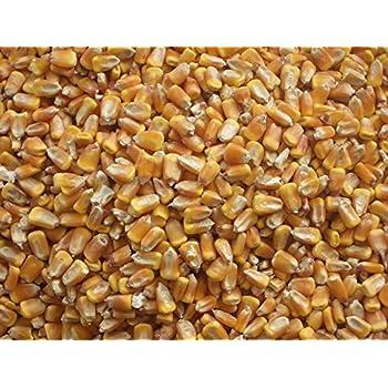 Amazon com: Jrk Seed & Turf Supply B112110 Shelled Corn, 10-Lbs