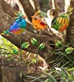 Wind & Weather Colorful Glass Bird Garden Stakes, Set of 3