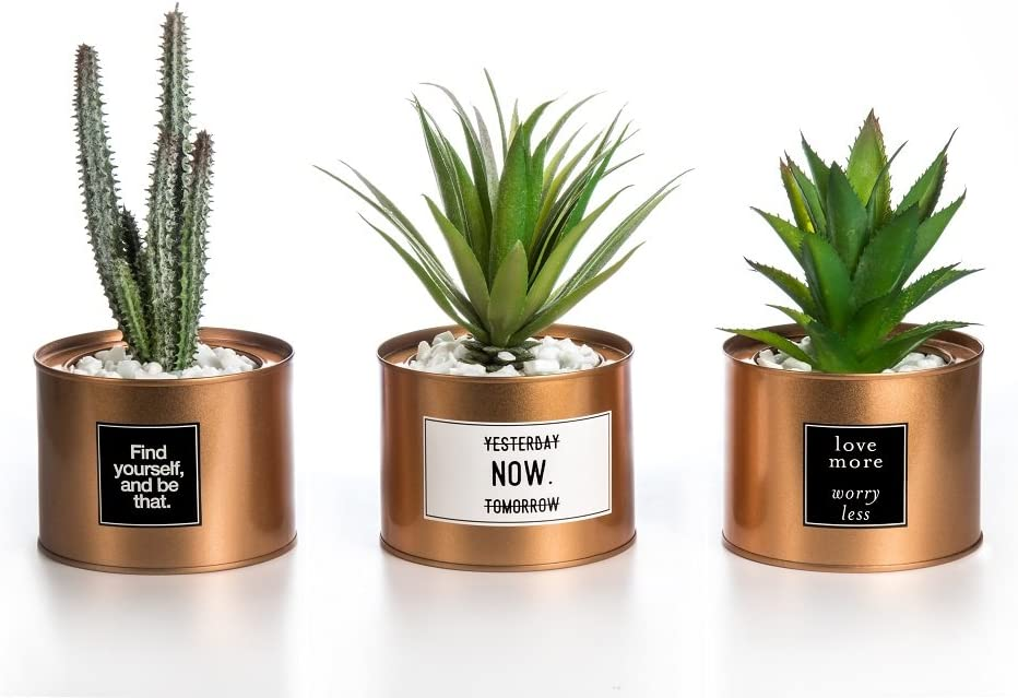 Opps Mini Artificial Plants Plastic Green Grass Cactus with Special Golden Can Pot Design for Home Décor – Set of 3 -