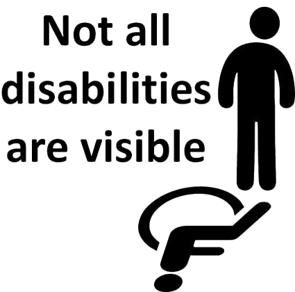 Disabled Car Sign Wheelchair Sign Not All DISABILITIES Are Visible Car Sign