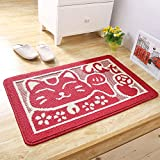 PRAGOO Cat Doormat Cartoon Animal Entrance Mat Bath Kitchen Mat Non Slip House Door Rug 20x30inch