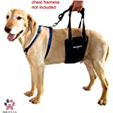 GingerLead Dog Support & Rehabilitation Harness - Medium (Male/Female) & Large Male Sling - Ideal for aging, disabled, or injured dogs needing assistance with their balance and mobility