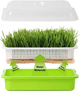 Homend Seed Sprouter Tray with Lid, Seed Germination Tray BPA Free Nursery Tray for Seedling Planting Great for Garden Home Office (1)