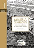 img - for Miner a y desarrollo. Tomo 1: Aspectos jur dicos de la actividad minera (Spanish Edition) book / textbook / text book