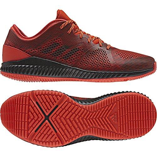 Chaussures femme adidas CrazyTrain Pro