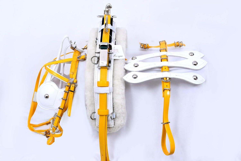 Aces Equine - Arnés de conducción para caballos (biotano), color amarillo y blanco