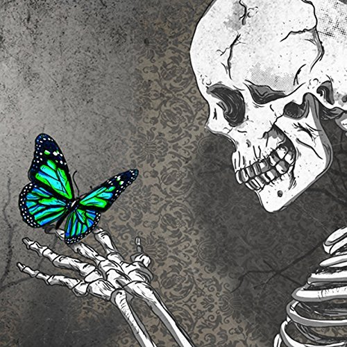 56472a066 Image Unavailable. Image not available for. Color: The skeleton butterfly , art,digital print,poster ...
