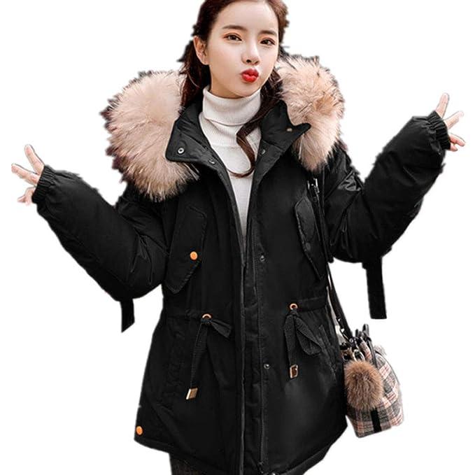 Abrigos algodón de Invierno, Almohadilla de algodón de Pluma versión Coreana de la Chaqueta de