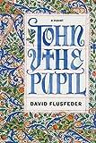 Bargain eBook - John the Pupil