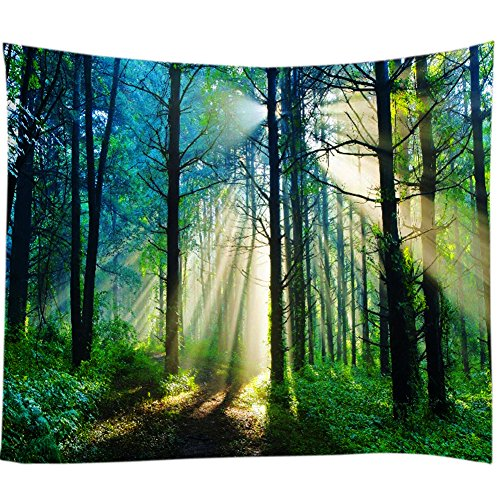Nature and the Forest's Ultimate Landscape Enjoy this Visual Feast Home Decoration Tapestry (Brown, 78Wx59L) ()
