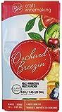 Orchard Breezin HOZQ8-1528 Breezing' Peach Perfection Wine Kit, Pink