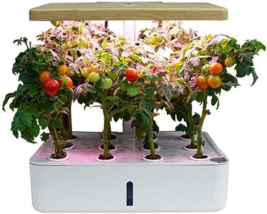 Sistema de cultivo hidropónico, 12 cápsulas: kit de jardín de hierbas para interiores con luz de crecimiento LED, cultivo inteligente para plantas, para la decoración de bricolaje de jardinería: Amazon.es: Hogar