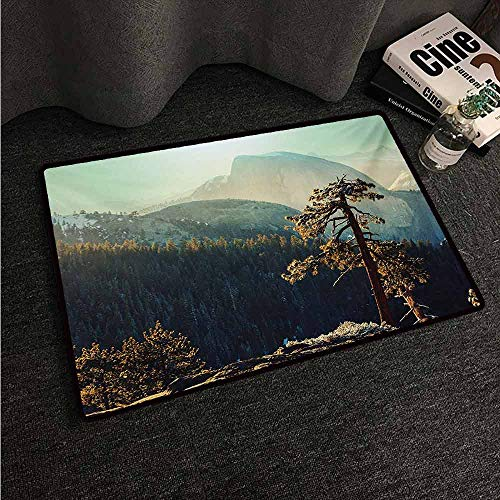 HCCJLCKS Entrance Door mat Yosemite Yosemite National Park from The Top of Mountain Misty Morning Landscapes Photo with Anti-Slip Support W31 xL47 Teal Brown (Wwe Top 10 Returns Of All Time)