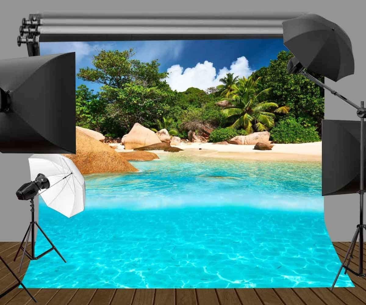 GoEoo 10X10ft Summer Holiday Resort Backdrop Beach and Sea Sunny Scenery Photo Background for Wedding Party Photo Shoot LYGE550