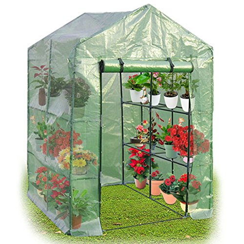 Superbuy Portable Greenhouse 8 Shelves Mini Walk In Outdoor Green House 2 Tier for Garden Patio Backyard