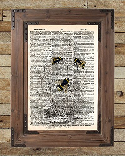 - Bumblebee art print, vintage bumblee lithograph print on old dictionary page