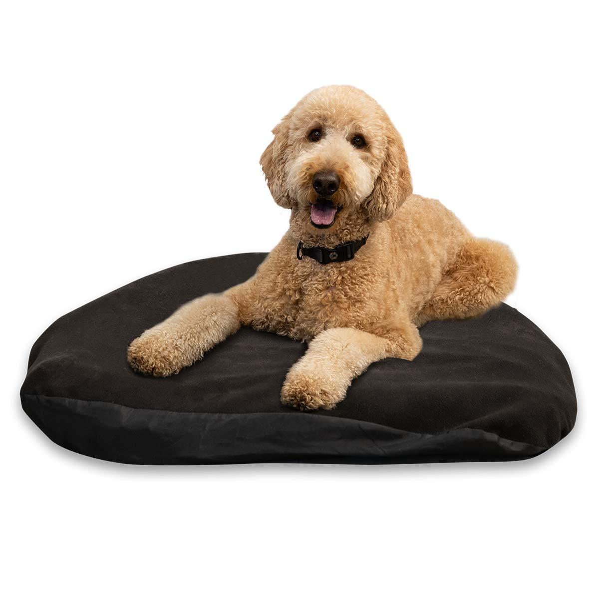 travel dog bed dog travel tips