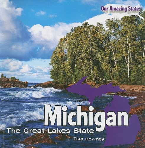 Michigan: The Great Lakes State (Our Amazing States)
