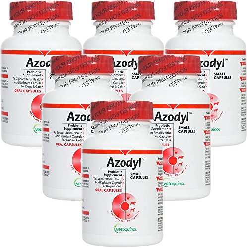 6PACK Azodyl Small Caps (540 count) by Azodyl
