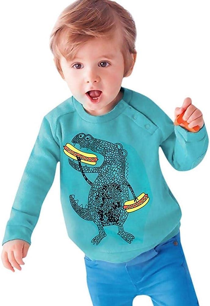 Toddler Boy Girl Kid Fall Winter Clothes Long Sleeve Cartoon Dinosaur Tops