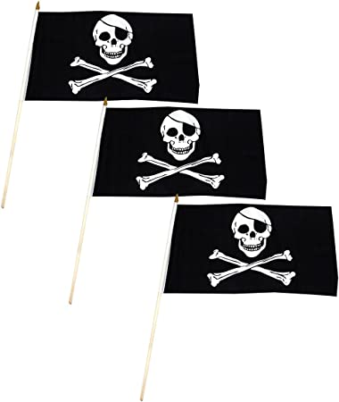 """12x18 12/""""x18/"""" Jolly Roger Pirate Beating Will Continue Stick Flag Staff"""
