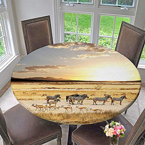 - Round Polyester Tablecloth Table Cover Safari Zebras with Their Striped Coats in Savannahs Adventure for Most Home Decor 40