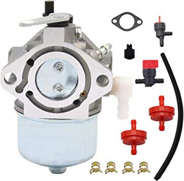 497164 Carburetor For Briggs /& Stratton 19G412 19E416-0108 499029 497844 Carb E1