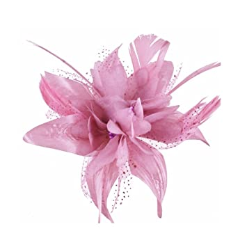 Amazon dusky pink flower and spotted net bridal hair comb dusky pink flower and spotted net bridal hair comb fascinator mightylinksfo