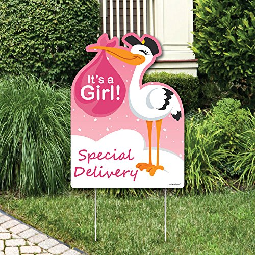 Stork With Baby (Big Dot of Happiness Girl Special Delivery - Baby Shower Decorations - Pink It's A Girl Stork Baby Announcement & Welcome Yard)