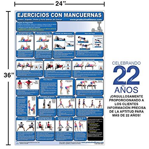 Ejercicios con Mancuernas - Centro/Espalda/pecho y parte inferior del cuerpo - Cartel - Dumbbell Exercises-Lower Body/Core/Chest and Back (Spanish Edition): ...