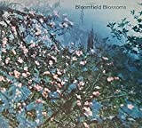 img - for Bloomfield Blossoms : Glimpses into the History of Bloomfield Township and Bloomfield Hills, Michigan book / textbook / text book